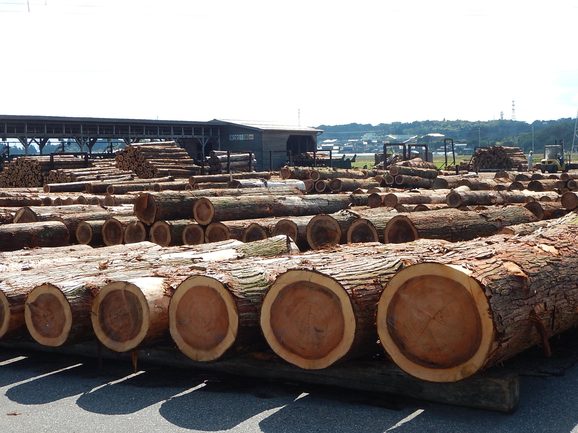 木材市場状況